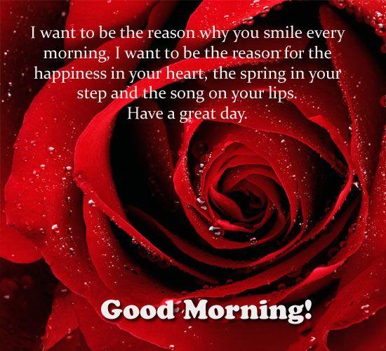 Good morning card to you free good morning ecards greeting cards good morning card to you free good morning ecards greeting cards 123 greetings m4hsunfo