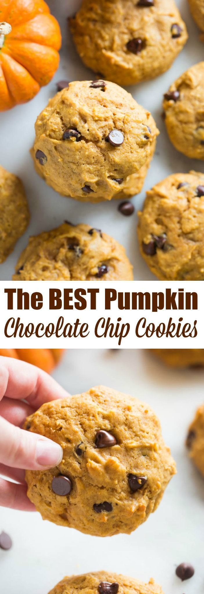 Pumpkin Chocolate Chip Cookies #pumpkindesserts