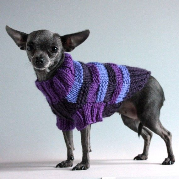 Purple Reign, Basketweave Striped Dog Sweater, XXS    I need size M,i hope I can feguer it out.