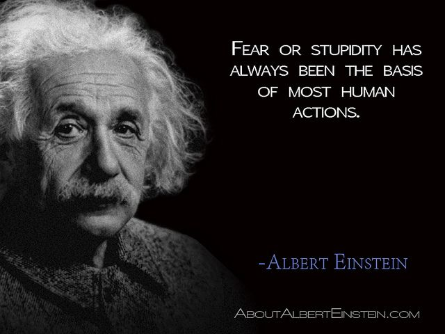 Image result for einstein quotes fear or stupidity
