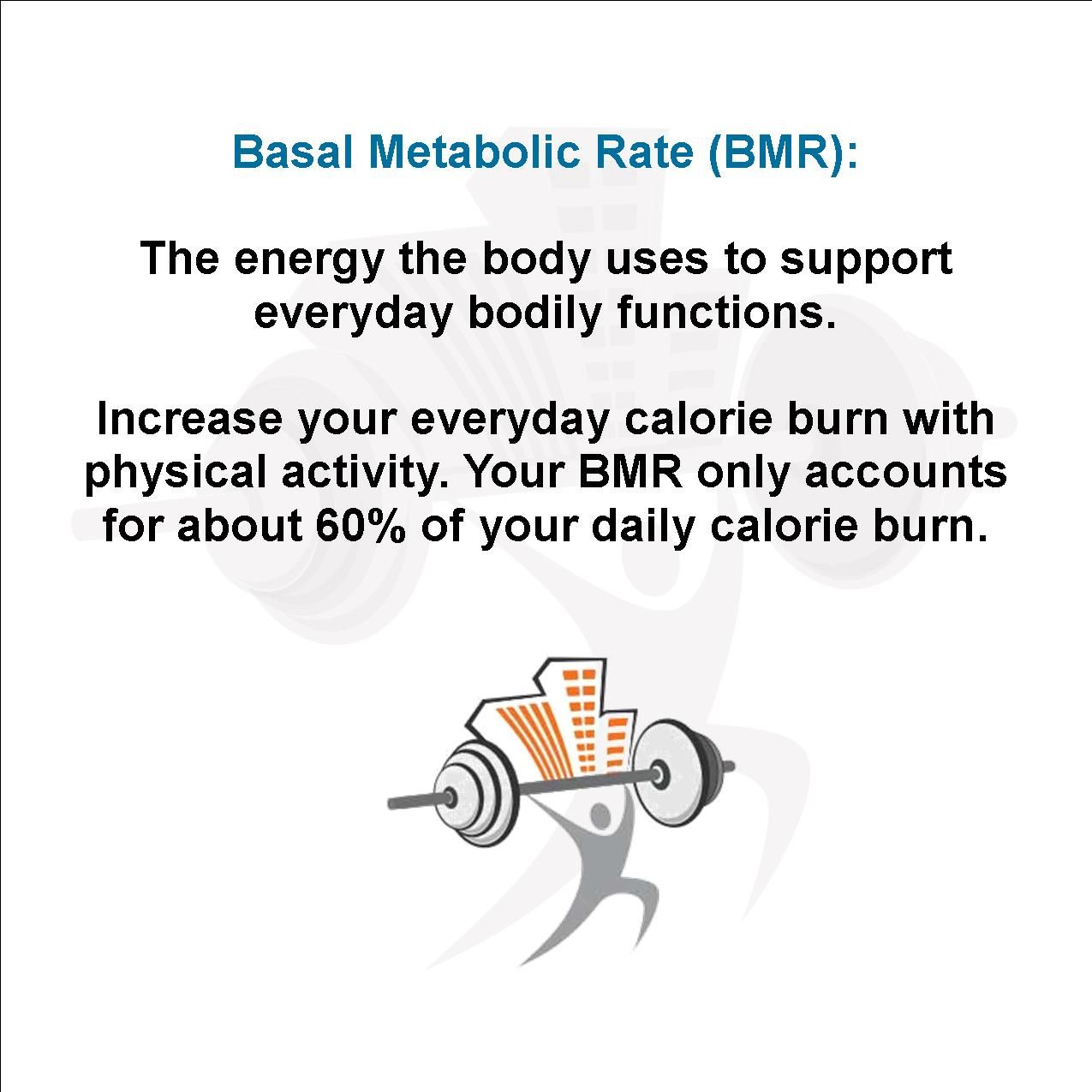 Basal Metabolic Rate Bmr The Energy The Body Uses To