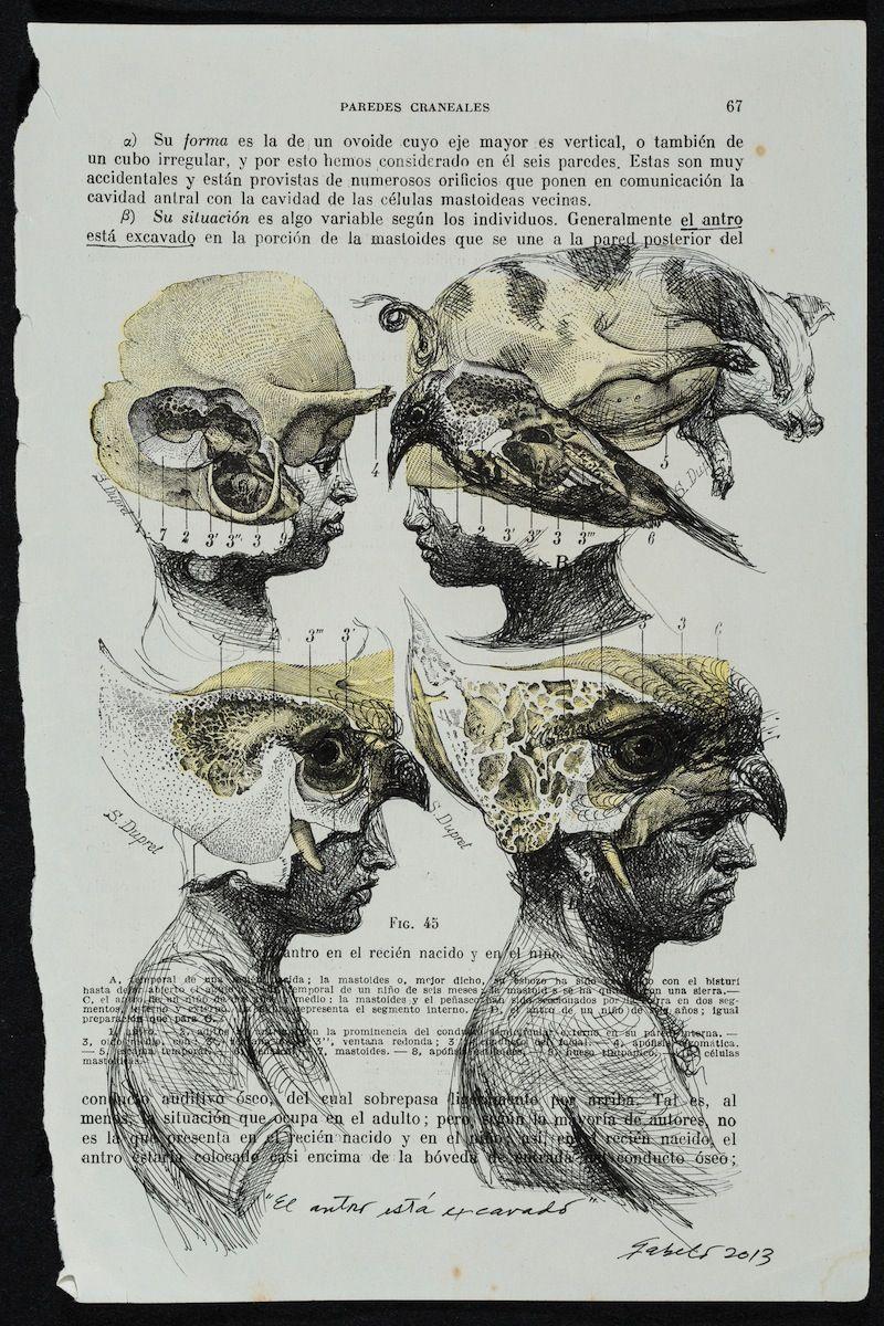 In Conversation: Roberto Fabelo on Fabelo\'s Anatomy | art is a ...