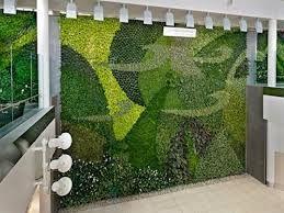 muros verdes에 대한 이미지 검색결과
