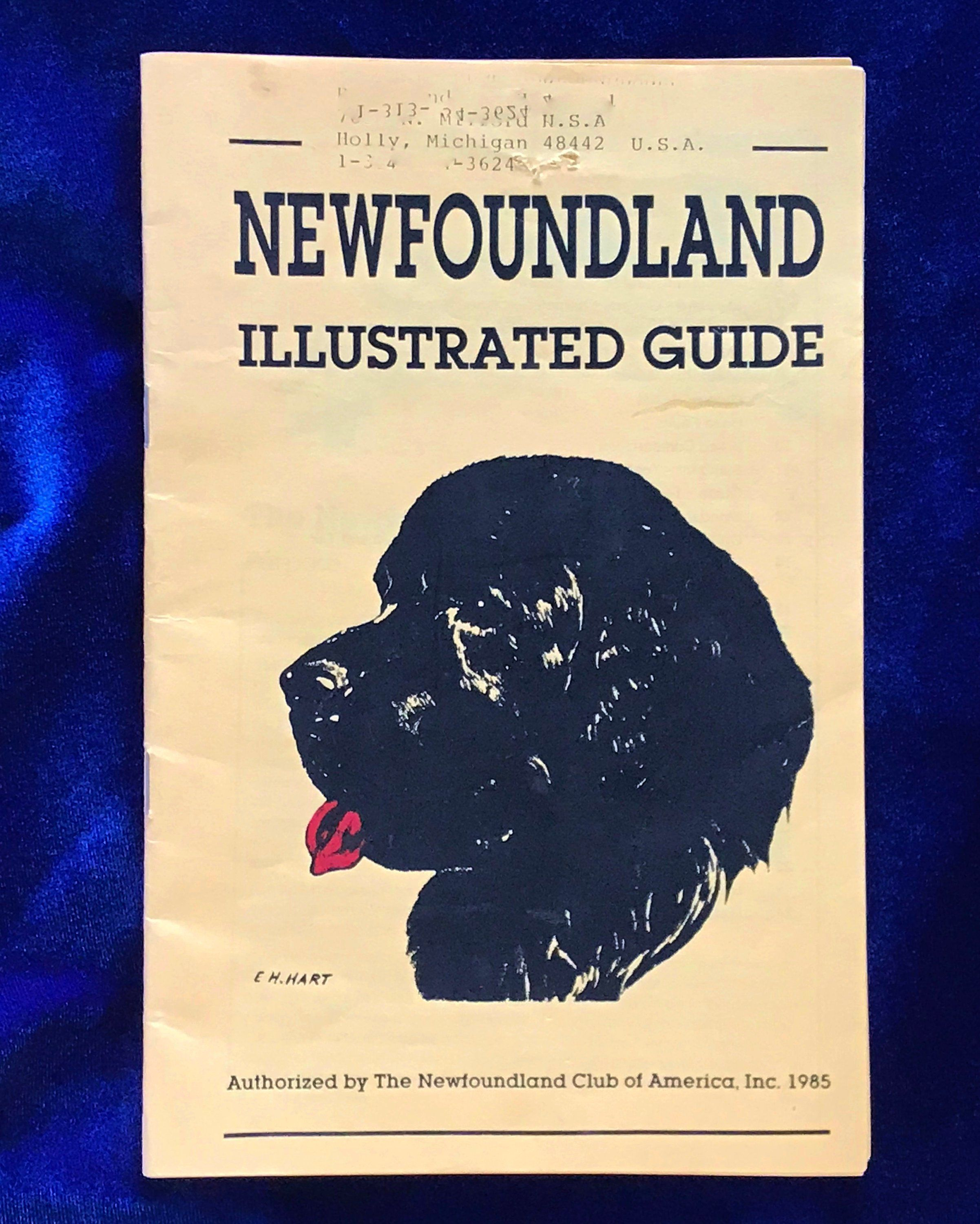 Newfoundland Illustrated Guide Dog Breed Booklet For Judges Breeders Layman 1985 For Sale At Yellow Dog Antiques On Etsy Guide Dog Dog Books Dog Breeds