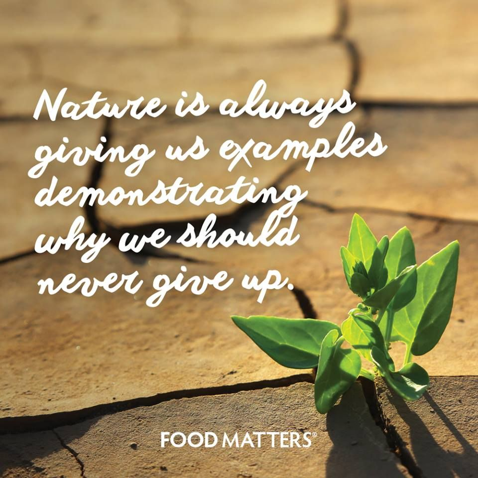 thank you mother nature food matters quotes mother nature