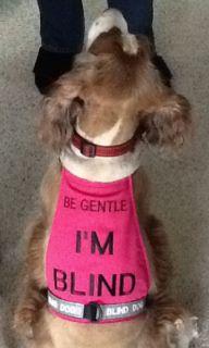 Lonewolf Dogwear Be Gentle I M Blind Dog Vest Blind Dog