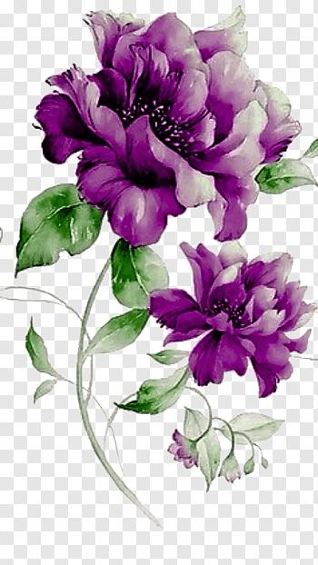 Flower Purple Floral Design Purple Flowers Purple Peonies Free Png Flower Illustration Flower Painting Watercolor Flowers Paintings