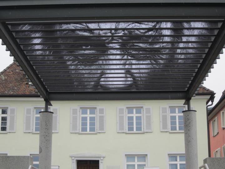 "Zebrating-Art  zebrating ""horizontal"" on a roof!!!"