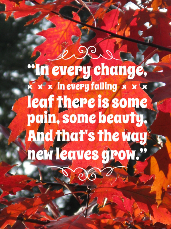 9 Beautiful & Inspirational Quotes about Autumn Autumn