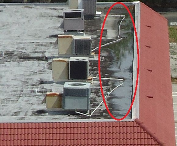Standing Water Roof Problems Roof Roof Maintenance
