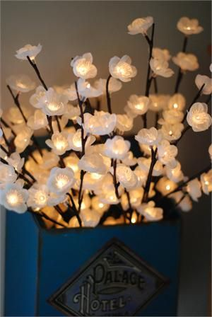 "Create a warm, magical glow for your home or next party with our Lighted Cherry Blossom Branch. Celebrating nature's beauty, the branch is bursting into bloom with 60 cream colored cherry blossoms and each contains a warm white LED inside. Branch plugs in with an A/C adapter and the cord is a generous 16ft. Branches are bendable for easy arranging. Indoor use only. Total Height: 20"", Stem Length: 5"" (Image here shows two(2) Lighted Cherry Blossom Branches)"