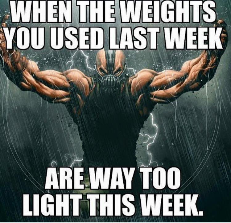 Funny Motivation Workout Meme : Workouts bodyspace fitboard gym humor pinterest