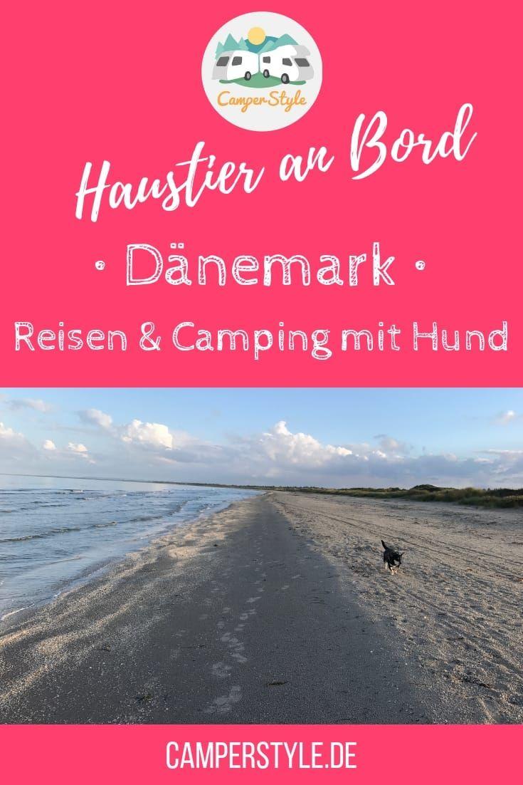 Dänemark Urlaub Mit Hund Gefährlich
