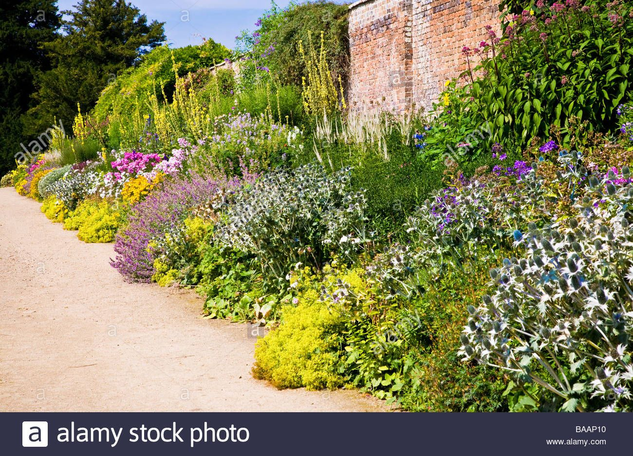 Colourful Herbaceous Perennial Summer Border On A Sunny Day At