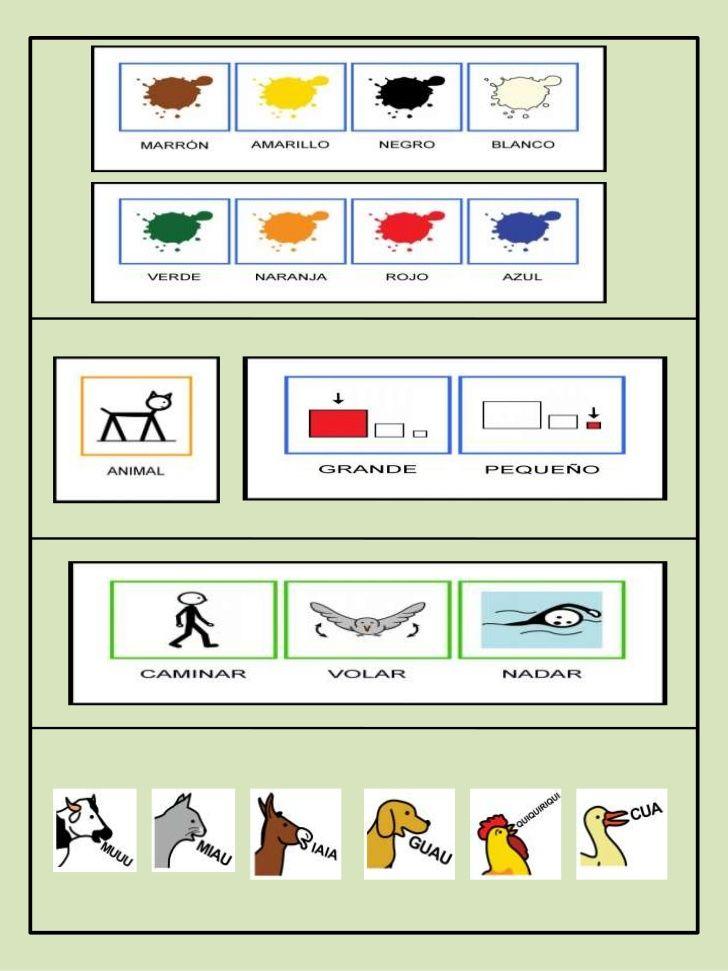 Describir personas y animales