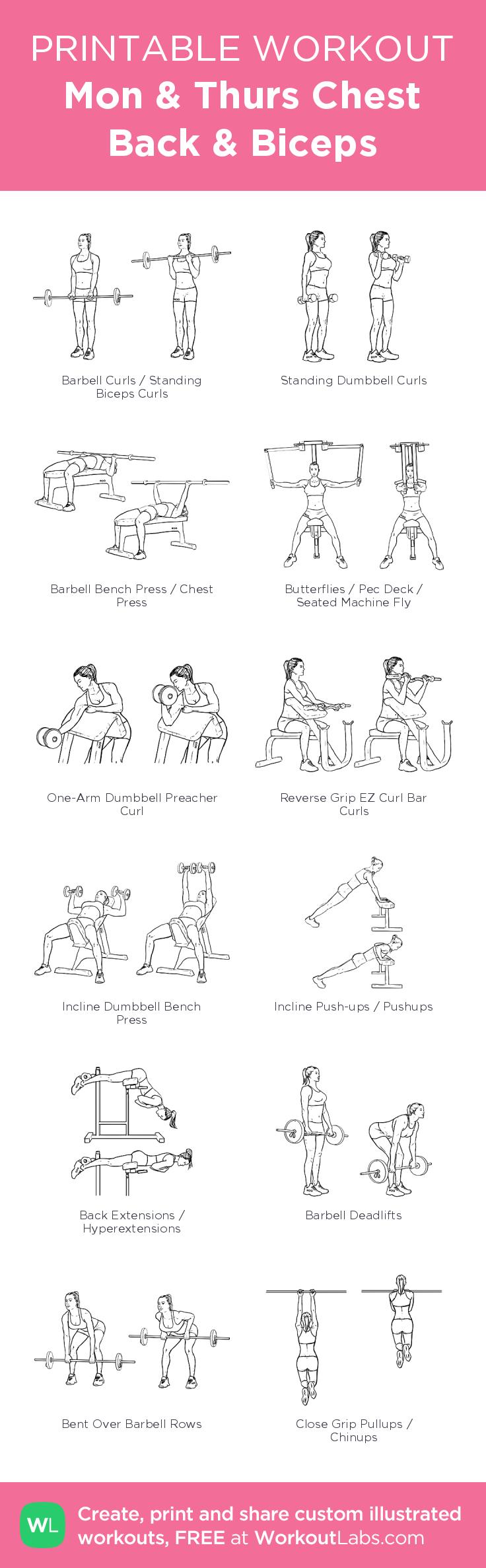 build bigger biceps