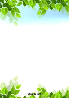 Frame Leaf Plant Floral Background