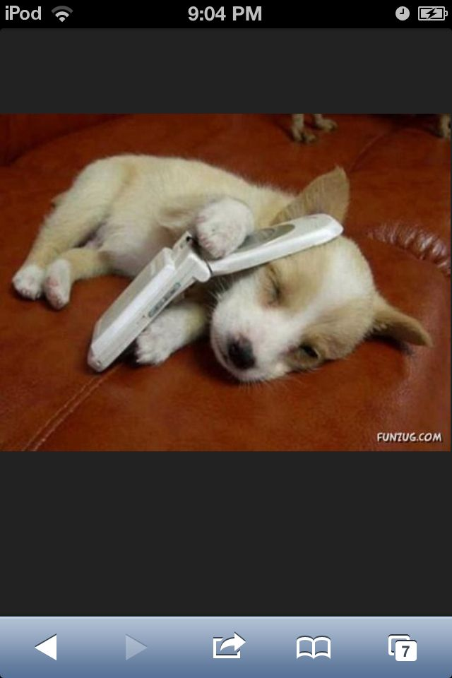 Shhhhhhhh!!! I'm on the phone... Well at least I hope that