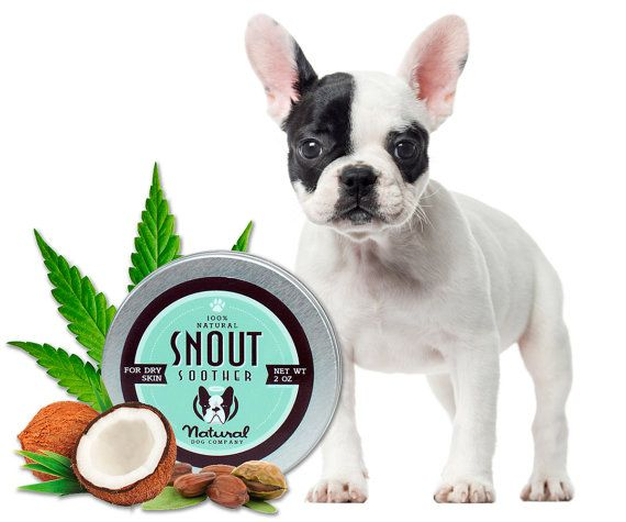 French Bulldog Nose Balm Snout Soother Salve For French Bulldogs
