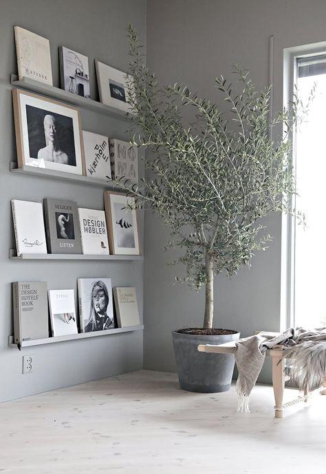 As árvores podem ser cultivadas dentro de casa, não dão muito trabalho e ainda adicionam um toque chique e moderno ao décor