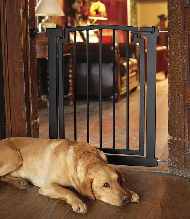 Just Found This Wide Metal Dog Gate Might Work At Front Entry