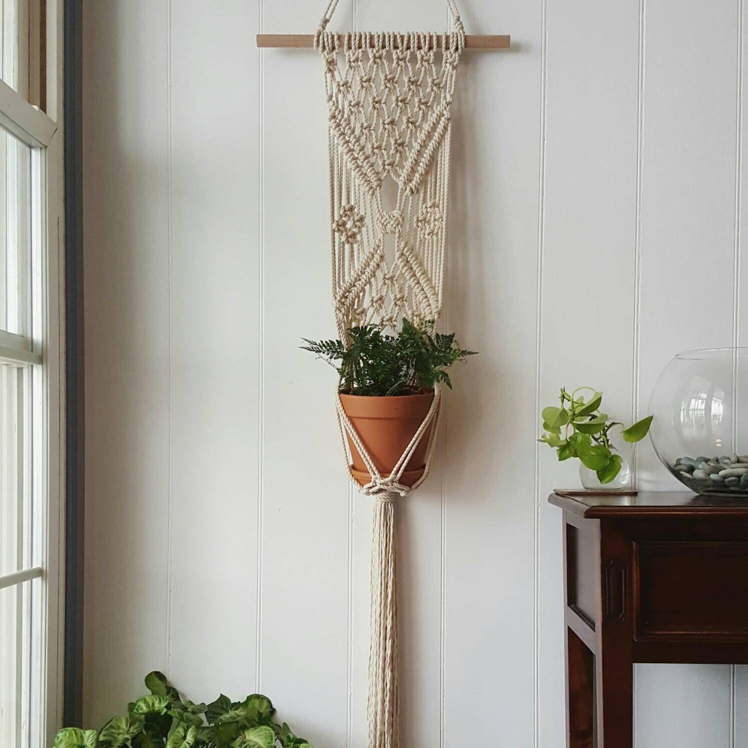 Indoor Wall Plant Holders