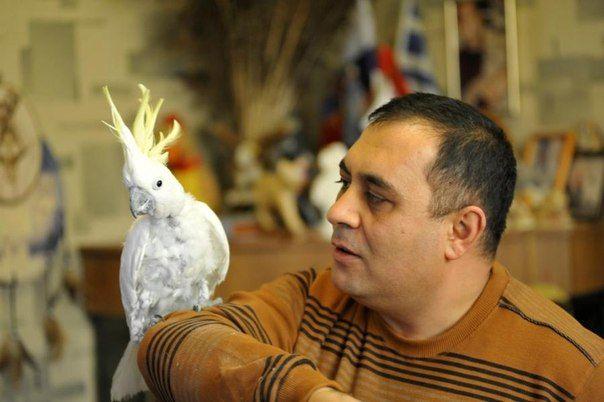 Карен Даллакян: 2 тыс изображений найдено в Яндекс.Картинках