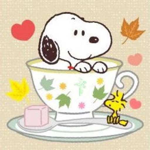 (via Gee McCarver) Snoopy in a teacup! <3