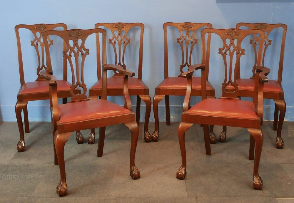 23b70fadd7295 Set Of Six Mahogany Chippendale Style Dining Chair - Antiques Atlas