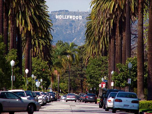 A View Of The Hollywood Sign From Streets Palm Tree Lined Beverly Hills
