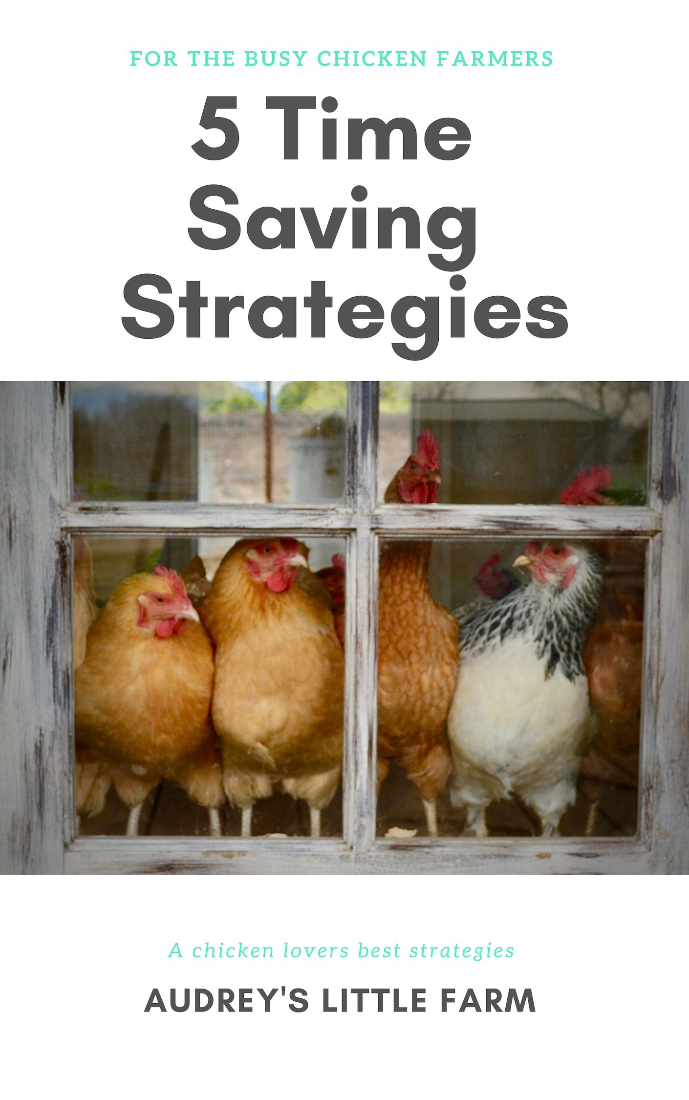 Benefits of Having a Chicken Coop Light - Audrey's Little ...