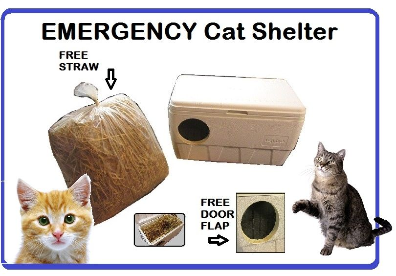 LARGE Warm Insulated Outdoor Cat House & Homes for Feral Strays ...