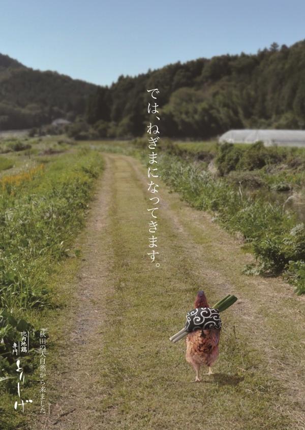 【悲報】鳥、とんでもない広告に利用される
