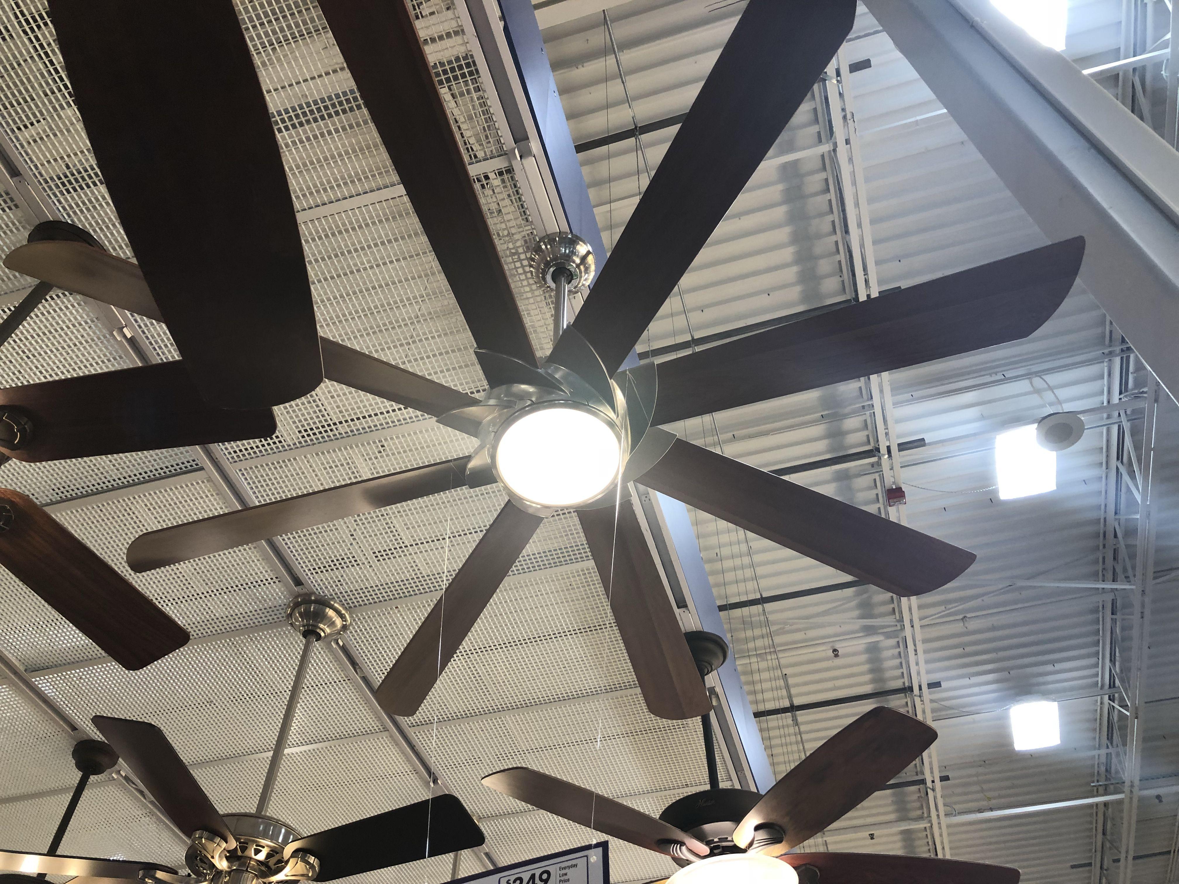 Pin By Jackie Kent Fitness On Fans Office Fan Ceiling Fan Home Decor