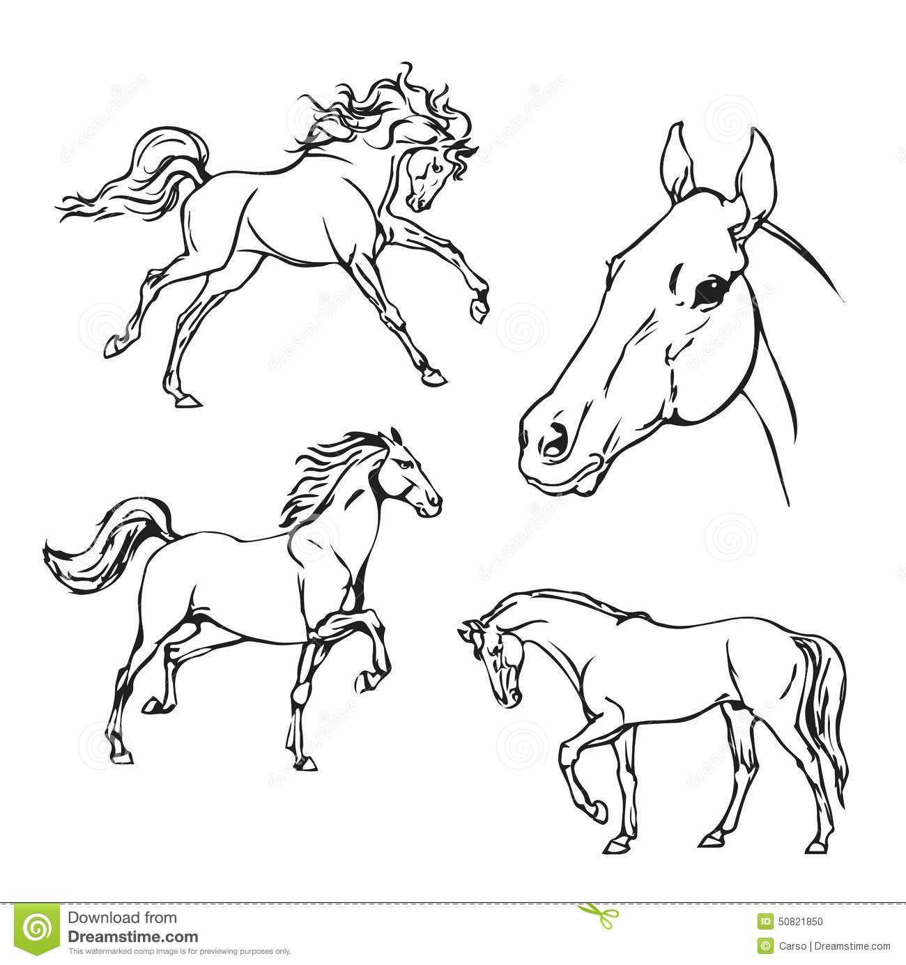 Galerij Van Kleurplaat Paard Sint Knutselen Sinterklaas Dingen Om Te Tekenen Paarden Illustratie