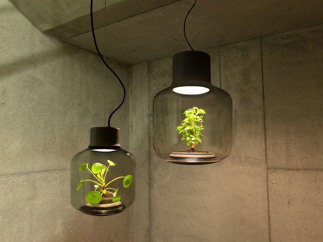 Pflanzen In Fensterlosen Raumen Wachsen Lassen Pflanzenlampe Led Pflanzenlampe Kreative Lampen