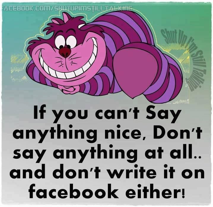 If You Can't Say Anything Nice Don't Post It On Facebook