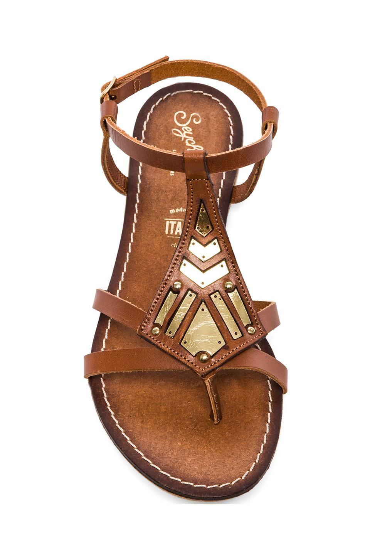 925339c3d9f9 Seychelles SANDALES SPARTIATE TRANSFER   Chaussures   Sandales ...