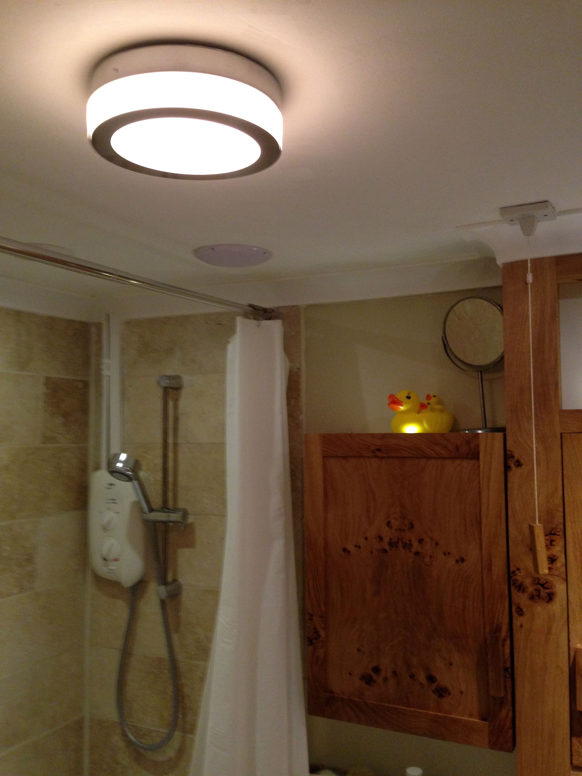 Bathroom Central Ceiling Light Fitting Speakers Coving And Travertine Tiled Walls