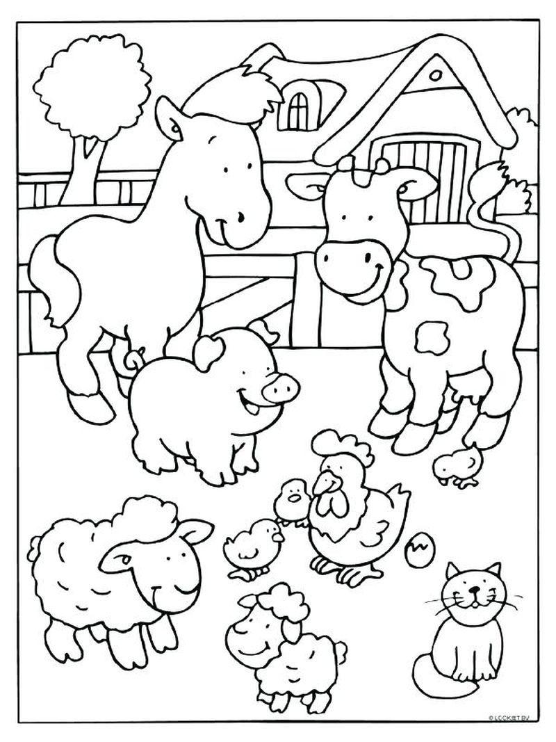 Farm Coloring Pages Printable Buku Mewarnai Gambar Hewan Binatang