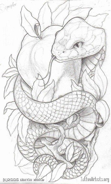 , Wie die Symbolik. Viele Schlangen- und Apfeltattoos … – #AppleTatto #die #Schlan …   – skizzen – #Apfeltattoos #AppleTatto, My Tattoo Blog 2020, My Tattoo Blog 2020