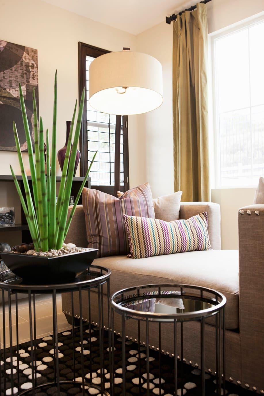 Photo Salon Feng Shui westwing-feng-shui-salon | how to feng shui your home