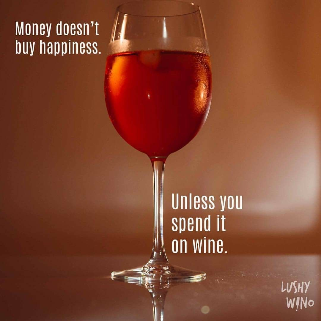 Pin By Suzanne Hamilton On Wine Money Doesnt Buy Happiness Wino Alcoholic Drinks