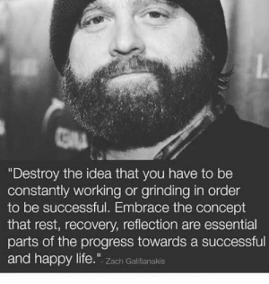 Destroy the Idea That You Have to Be Constantly Working or Grinding in Order to Be Successful Embrace the Concept That Rest Recovery Reflection Are Essential Parts of the Progress Towards a Successful and Happy Life Zach Galifianakis | Life Meme on ME.ME