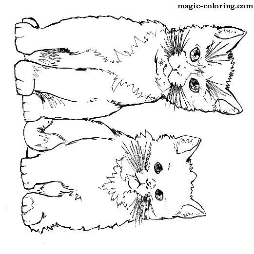 Magic Coloring Cats Coloring Pages Cat Coloring Page Animal