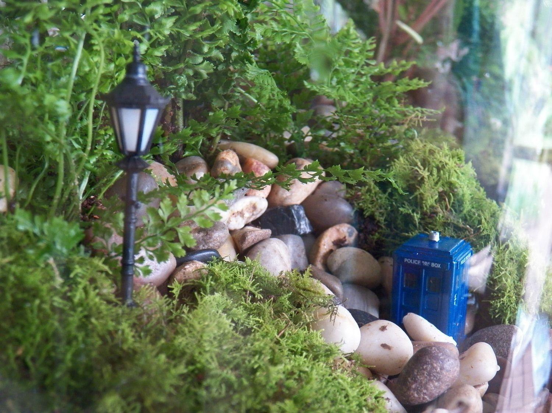 """Another from""""Little Lands"""" Little land, Mini garden"""
