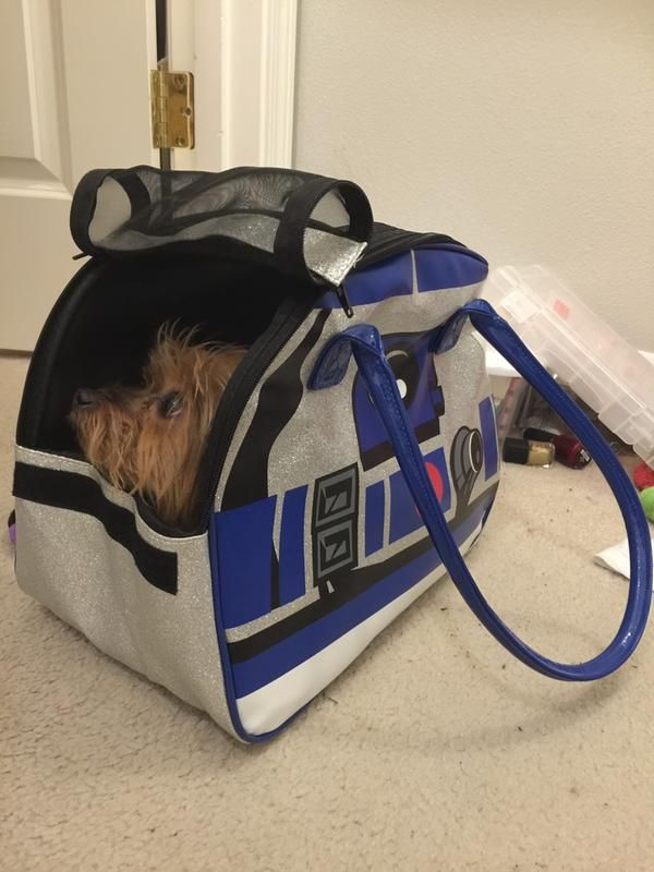 Star Wars R2 D2 Pet Carrier Petco Store Pet Carriers Pets Dog Crate