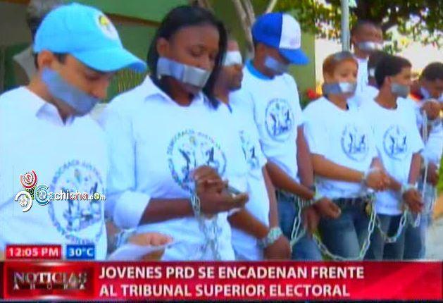Jovenes Se Encadenan Frente Al Tribunal Superior Electoral #Video
