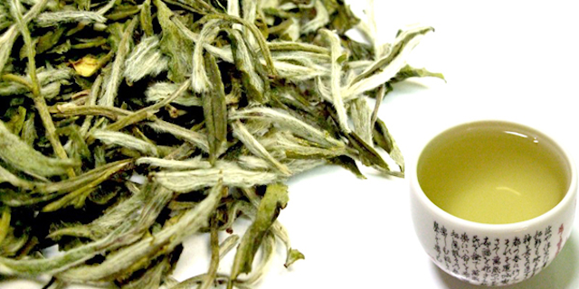 Chá Branco um aliado que ajuda a emagrecer! - http://goo.gl/X9Dx5t  Por: katinha Etiquetas: #ParaPoupar, #Beleza, #Chá
