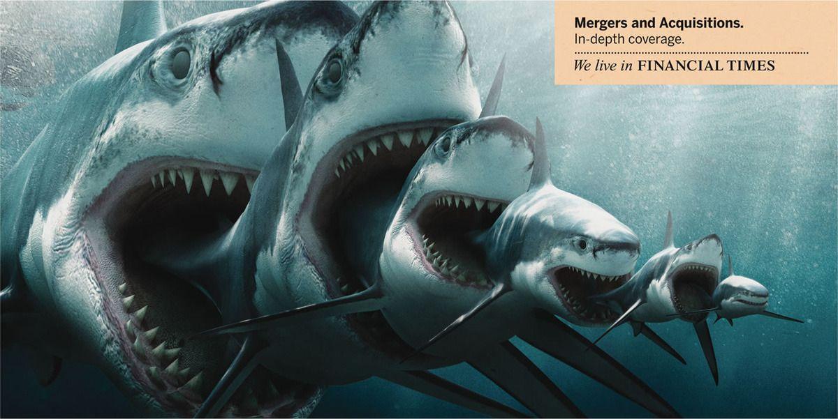 PREHISTORIC SHARK: MEGALODON Megalodon is an extinct species